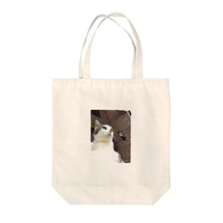 いつもふてぶてしいうちの愛猫 Tote bags