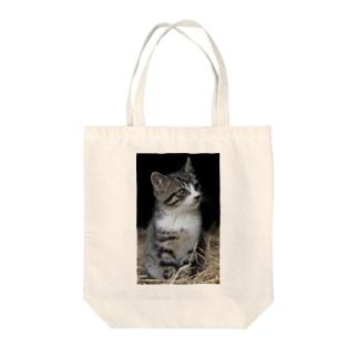 仔猫 Tote bags