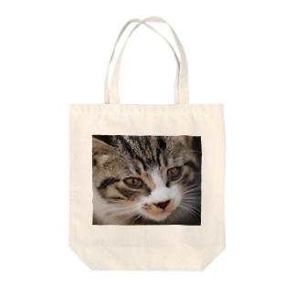 仔猫の顔 Tote bags