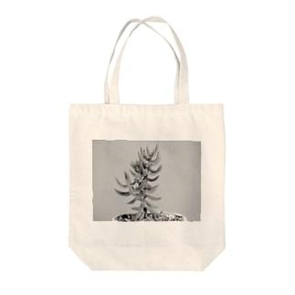 多肉植物B Black and white Tote bags
