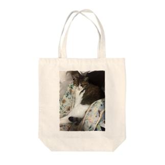 かためねこさん【すっぽり】 Tote bags