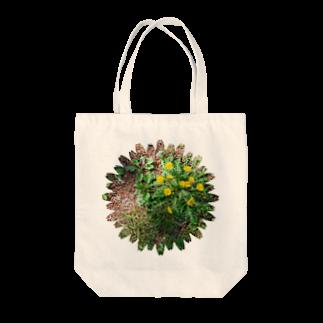 フォトルームイシマルの林の中のたんぽぽくん Tote bags