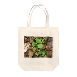 美しい葉たち Tote bags