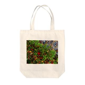 秋の水辺 DATA_P_145 Tote bags