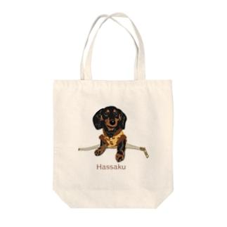 ファスナーからHassaku Tote bags