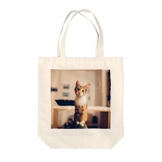 あれ何?ネコさんTo-To Tote bags