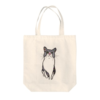 Noixmのcat Tote bags