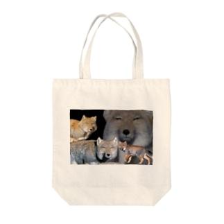 色々雑貨屋さんのスナギツネ Tote bags