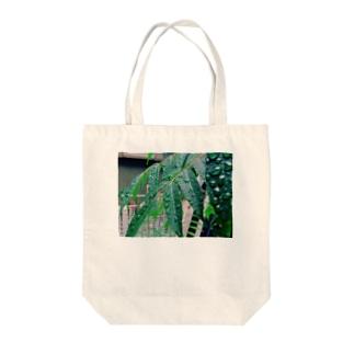 かがやくハゼくん(仮) Tote bags