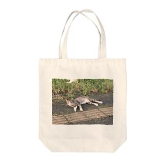 野良猫 feat. 荒川の河川敷 in 赤羽 Tote bags