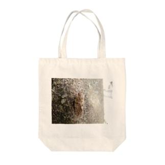 日本の昆虫:アブラゼミ Japanese large brown cicada Tote bags