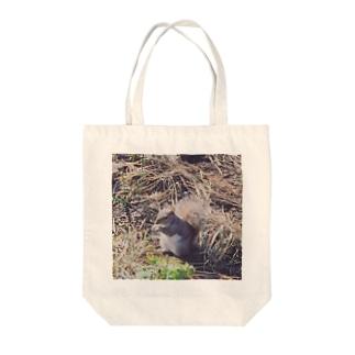 セントラルパークのリス Tote bags