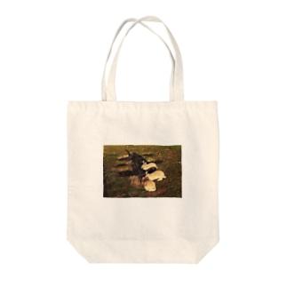 夕暮れ時の井戸端会議 Tote bags