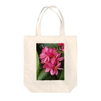 Jewel of the planet Tote bags
