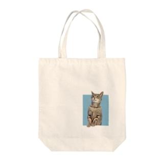 小鉄バッグシリーズ Tote bags