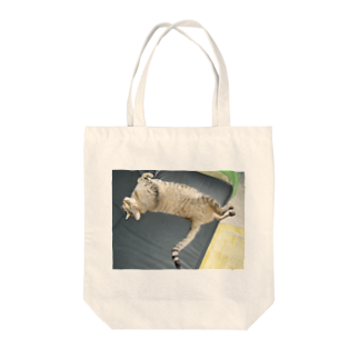 CarrieMomのイにゃバウアーミンタ Tote bags