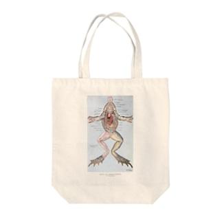 カエルの解剖 Tote bags
