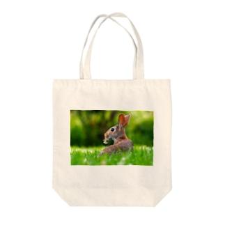 うさぎ Rabbit 🐰 トートバッグ