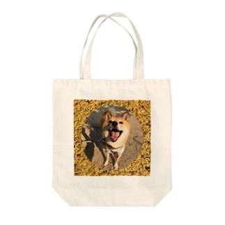 柴犬コタロー Tote bags