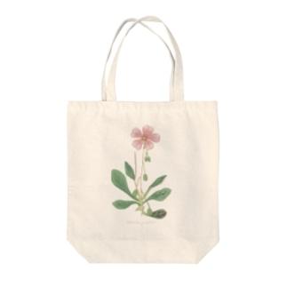 カランドリニア <アンティーク・ボタニカルアート> Tote bags