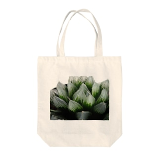 ハオルチア オブツーサ系3「ブルーレンズ」 Tote bags