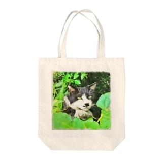 二枚目な猫 Tote bags