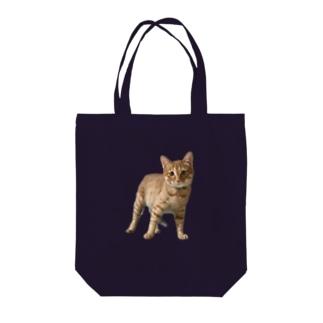 チャム&シロ Tote bags