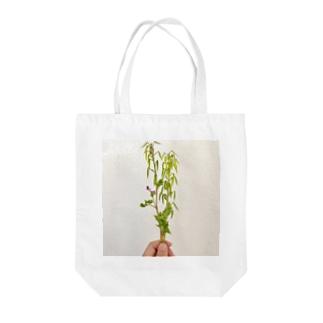 2019年4月16日の散歩中に摘んだ草 Tote bags