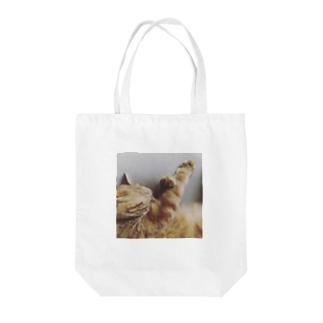 トラ猫の海老蔵くん Tote bags