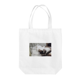 Are you a cat ? Tote bags