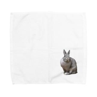 うさぎのミニー Towel handkerchiefs