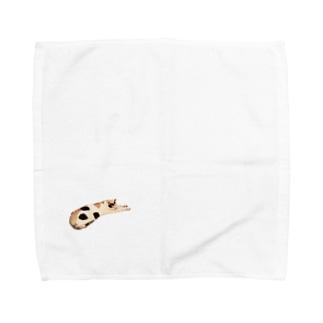ミケねこです。 Towel handkerchiefs