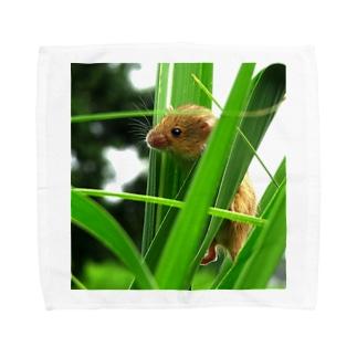 小さい小さいネズミ Towel Handkerchief