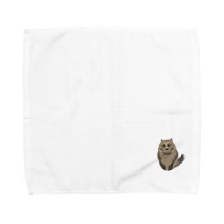 たぬー Towel handkerchiefs