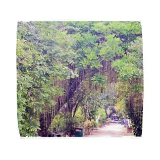 メキシコの植樹園 Towel handkerchiefs