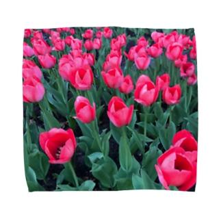 ウクライナのチューリップ Towel handkerchiefs
