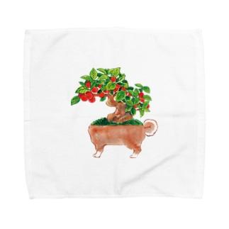 イヌモドキ Towel handkerchiefs