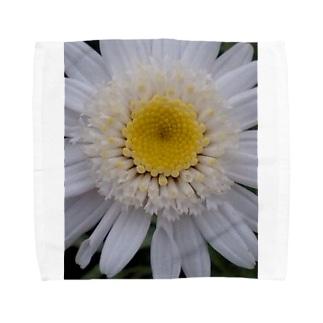 真っ白く・・・清らかに Towel handkerchiefs