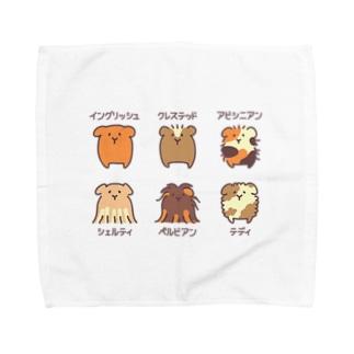 モルモット6種盛り合わせ Towel handkerchiefs