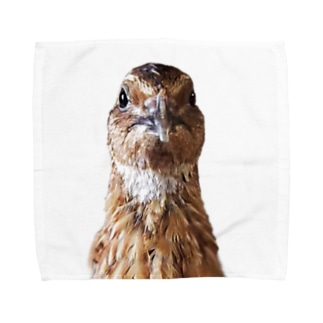 ガン見ウズラ Towel handkerchiefs