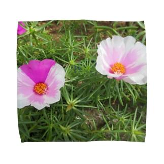 ピンクのマダラちゃん Towel handkerchiefs