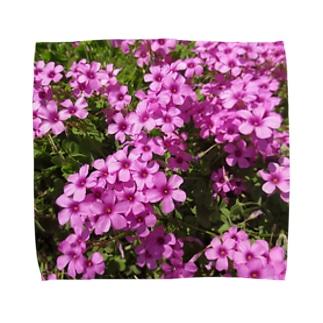 野の花の可憐さ・・・ Towel handkerchiefs