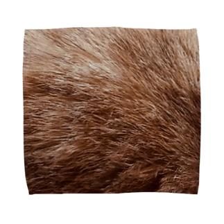 猫の毛柄 Towel handkerchiefs
