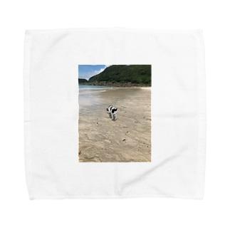 種子島ネコ Towel handkerchiefs