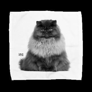 HUGオフォシャルショップのThe Cat Kingタオルハンカチ