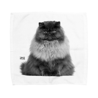 HUGオフォシャルショップのThe Cat King Towel handkerchiefs