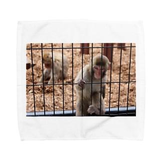 にっぽんのさる Towel handkerchiefs