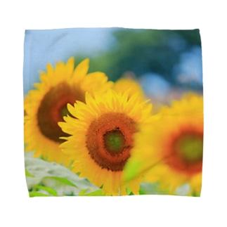 M.F.Photoのひまわり畑 Towel handkerchiefs