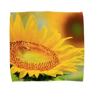 M.F.Photoのひまわり Towel handkerchiefs