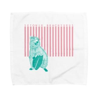 クアッカワラビー Towel handkerchiefs